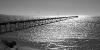 Ceduna, le désert en bord de mer